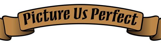 picture us perfect logo e1501864984949 536x150 - Picture Us Perfect Photo Booth